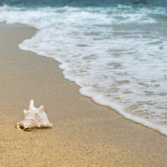 Tot aan de kust en dan verder! | Werken op de Wadden